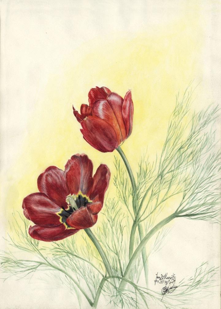 Zoom - Tulipes.jpg